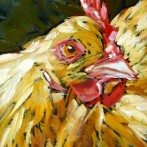 """Ladybird""–A Chicken Portrait!"