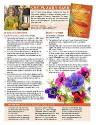 Cut Flower Tips