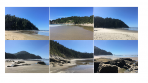 six small photos of the beach